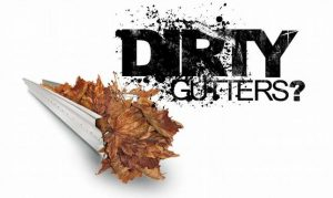 Gutter Cleaning options